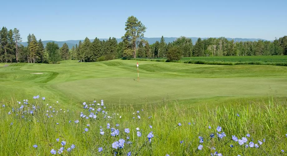 bmc golf